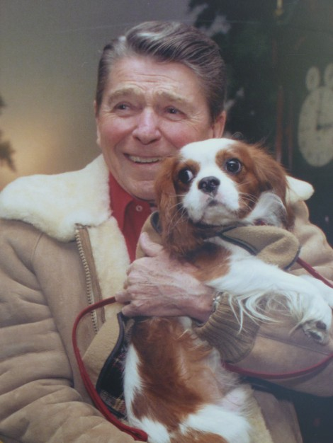 Dogs Of Us Presidents 2012